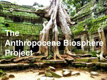 More_Angkor_Trees_(1503334934)