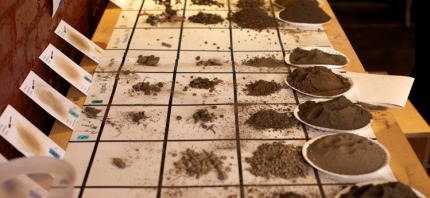 Irons soil